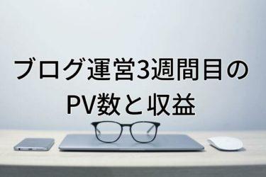 【運営報告】大学生ブログ運営3週間目のPV数と収益