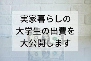 【リアルガチ】実家暮らしの大学生の出費はどのくらい?生活費はほぼ0円!