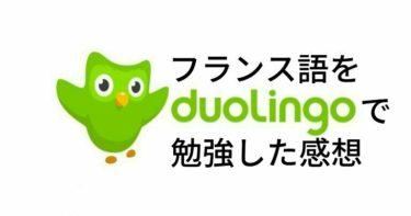 【体験談】Duolingoでフランス語を勉強した感想【気軽に学習できる】