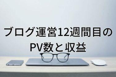 【運営報告】大学生ブログ運営12週間目のPV数と収益