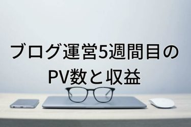 【運営報告】大学生ブログ運営5週間目のPV数と収益