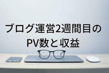 【運営報告】大学生ブログ運営2週間目のPV数と収益