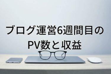 【運営報告】大学生ブログ運営6週間目のPV数と収益